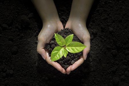 Nuestra apuesta por la CALIDAD en un entorno sostenible